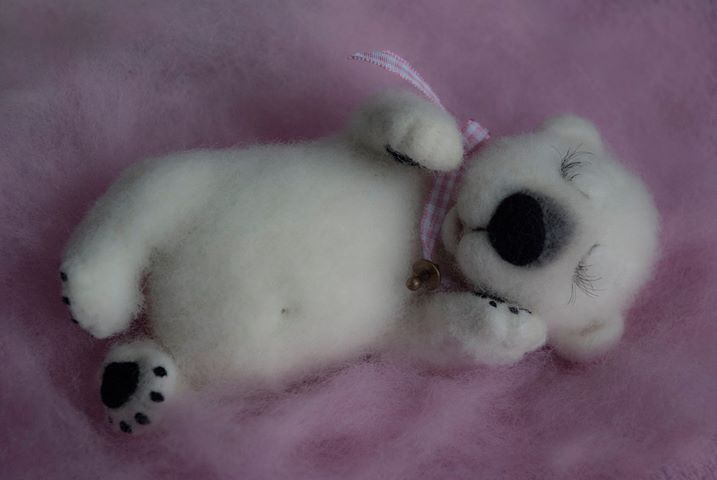 cute wool bear toy