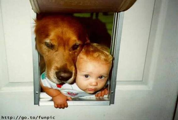 baby and dog (11)